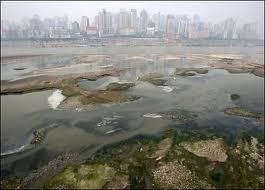 China: grave contaminación por metales pesados