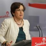 El PSOE reclama que el Consejo de Estado informe sobre la reforma del aborto que pretende el Gobierno