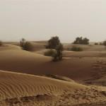desierto del sahara1