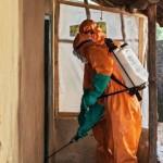 ebola24