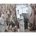 Rusia levantó las restricciones sanitarias a frigorífico local
