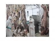 Carne Frigorifico Paraguay1