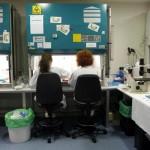 Denuncian una trama que realiza costosas pruebas de clínicas privadas en la pública.