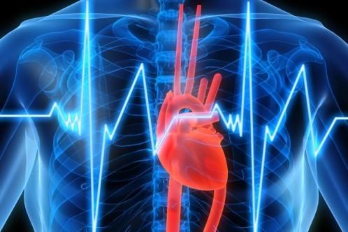 Evitar la rehospitalización en la insuficiencia cardiaca