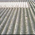 107.000 muertes anuales provoca el amianto