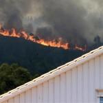 Incendios forestales1
