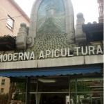 DIETA MEDITERRÁNEA: La mejor miel de Madrid