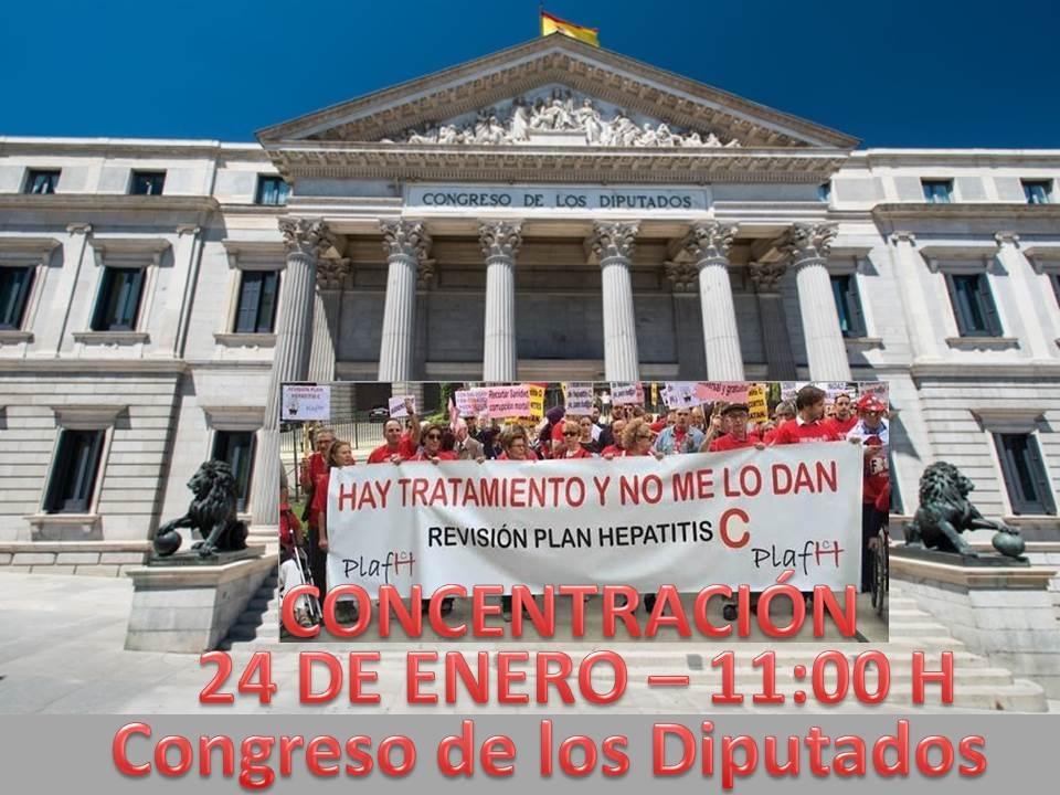 LA PLAFHC COMPARECERÁ EL 24 DE ENERO EN EL CONGRESO DE LOS DIPUTADOS.