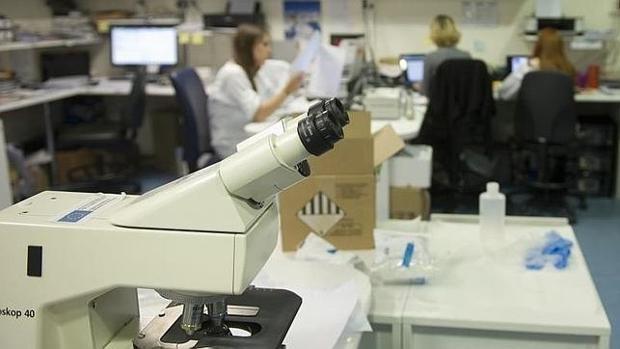 Dos hospitales españoles prueban un fármaco contra el cáncer cien por cien español